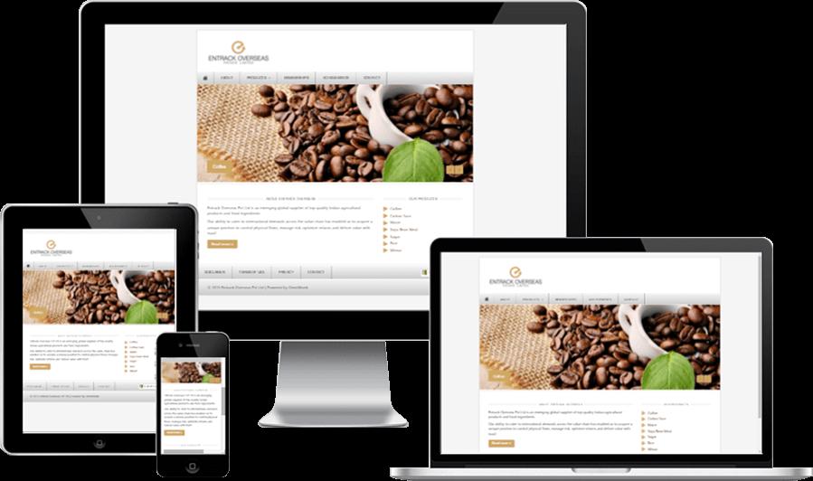 Minimalistic Responsive Website for Entrack Overseas